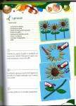 disegni e lavoretti da comporre per bambini,scuola materna,disegni da colorare,art attack,bambini